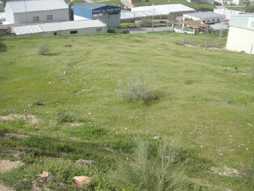 Suelo en venta en Suelo en Loja, Granada, 11.600 €, 303,63 m2