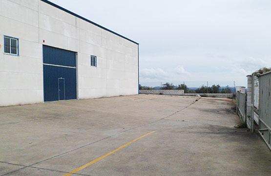Industrial en venta en La Carolina, Jaén, Camino los Cortijos Altos de Toledo, 615.300 €, 4 m2