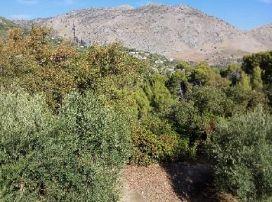 Suelo en venta en Suelo en Jaén, Jaén, 500 €, 150 m2